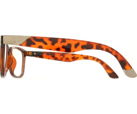 Clear Metal Tip Cool Glasses - Tortoise/Clear