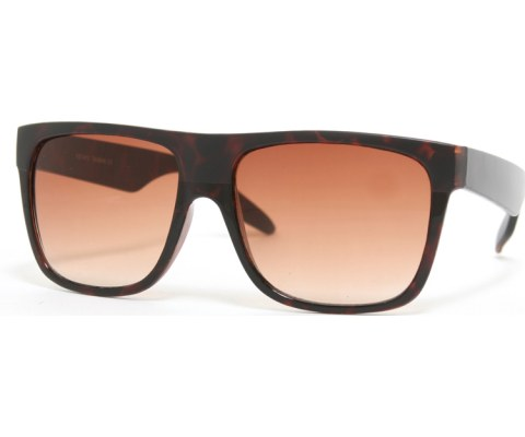 Matte Black Sunglasses - MatteTortoise/Tortoise/Brown
