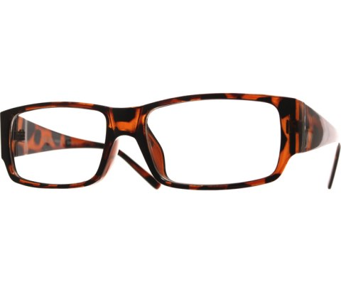 Glossy Reading Glasses - Tortoise/Clr
