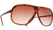 Mustang Aviators II - Tortoise/Brown