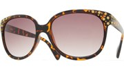 Gold Dots Sunglasses - Tortoise/Brown