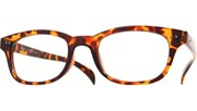 Reading Glasses - Brown/Clear