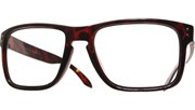 Side Bolted Reading Glasses - Tortoise/Clr